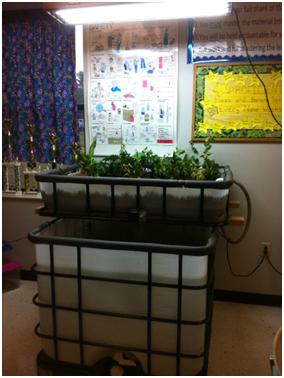 Classroom aquaponics system in Hazen, Arkansas